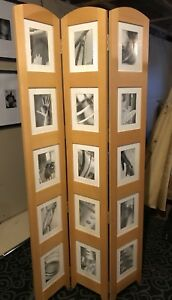 Decorative picture frame display