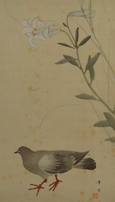 Pigeon JAPANESE PAINTING ANTIQUE Lily HANGING SCROLL OLD From JAPAN Picture d850