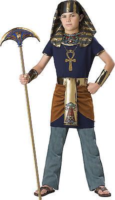Child Egyptian King Pharaoh Costume  - Egyptian Costume Boys