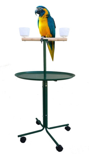 """47"""" Large T-PlayStand Metal Base Cups Parrot Amazon African Grey Macaw Cockatoo"""