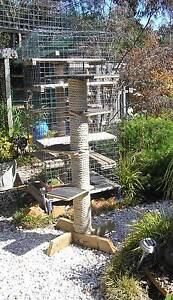 Cat tower scratching post Invermay Park Ballarat City Preview