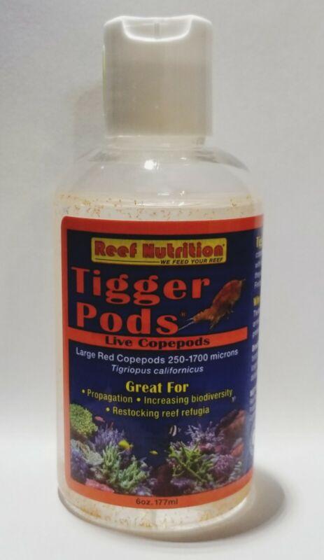 Reef Nutrition Live Tigger Pods 6oz (Live Feeder/Refugium Starter) - Stock Item