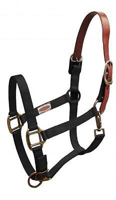 Showman BLACK Nylon Breakaway Western Horse Halter W/ Leather Crown! HORSE TACK! Black Leather Horse Halter
