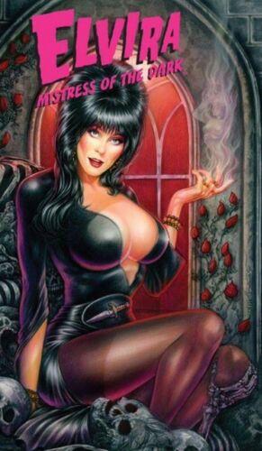 ELVIRA Comics Sexy Horror comics Collection cbr English Digital vol. 1  - RARE