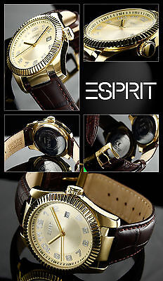 Elegant Men's Esprit Watch Very Nice Easy to Read Box Pappiere Arabis.zahlen