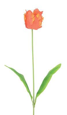 ei Tulpen Stiele 59cm Flamme Coral Farbe Hochzeitsdekoration (Coral Farbe Hochzeit)