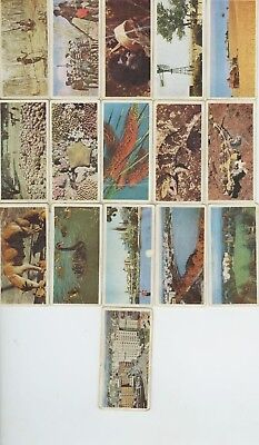 16 Australia Lyons Tea Picture Cards  Commonwealth Series 1958