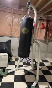 Heavy Bag and stand with speed bag (including gloves)