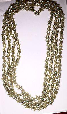 "Old 72"" Tasmanian Maireener Aboriginal AMAZING Iridescent colors Shell Necklace"