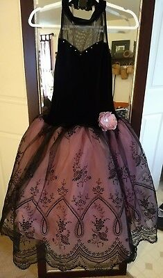 Ballerina Costume For Women (WOMEN'S NWOT Adult  Medium BALLERINA HALLOWEEN  COSTUME  BEAUTIFUL Pink &)
