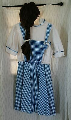 Dorothy From The Wizard Of Oz Costume (Dorothy Dress Up Costume   from the Wizard of OZ with Dorothy)