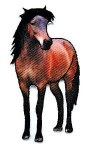 Applikation zum Aufbügeln Bügelbild   9-300  Pferd / Horse