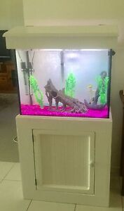 2ft Fish Tank Complete Set Up Rutherford Maitland Area Preview