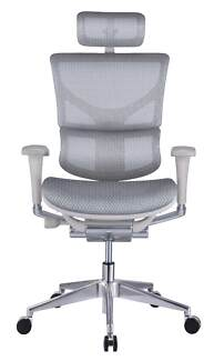 ergohuman chair in adelaide region sa furniture gumtree