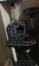 Multi Level Cat Tree/Stand Wembley Downs Stirling Area Preview