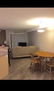 Cozy 1 Bedroom Condo in McKenzie Towne