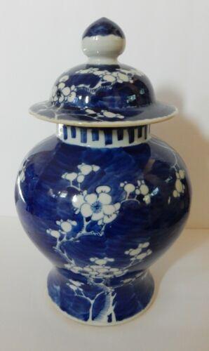 """Antique Asian Signed Prunus GINGER JAR Vase Floral Porcelain Blue White LG 12"""""""