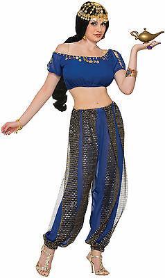 Adult Arabian Dark Harem Dancer Costume One Size