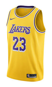 47fecff3 Nike LeBron James Icon Edition Swingman Men's Jersey (LA Lakers),  Amarillo/Field Purple/White - Size L