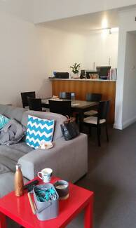 Looking for new housemates to join fab Carlton sharehouse!