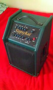 """JAZZ AMP """" GYPSYKAT BY JAZZKAT AMPS IN GREAT CONDITION North Perth Vincent Area Preview"""