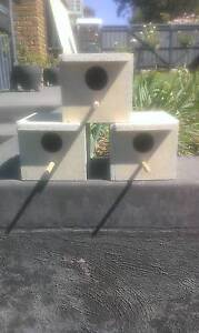 Finch nest boxes Parafield Gardens Salisbury Area Preview
