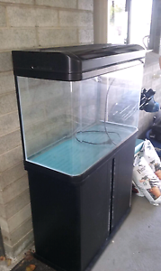 Good fish tank South Hobart Hobart City Preview
