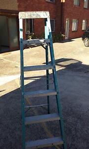 ladder gorilla Roselands Canterbury Area Preview