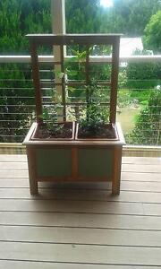 Hand Made Australian Wood Plant Boxes Tamborine Mountain Ipswich South Preview