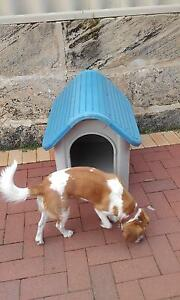DOG KENNEL Ashby Wanneroo Area Preview