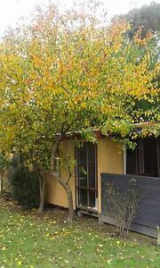 WYE RIVER HOLIDAY PARK CABIN Wye River Colac-Otway Area Preview