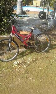 Ladies Bicycle Hemmant Brisbane South East Preview