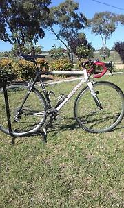 Colnago c-50 Road bike Stanthorpe Southern Downs Preview