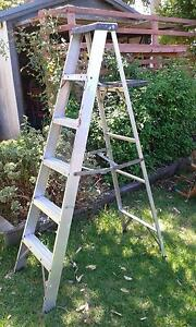 Ladder with paint tray Lesmurdie Kalamunda Area Preview