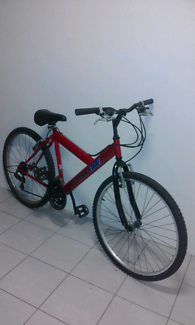 "Malvern star 26"" mountain bike"