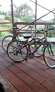 Quality 2 x Giant Bikes - His & Hers  - RRP  $500+ Each - BARGAIN Tascott Gosford Area Preview