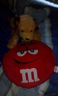 hi dog with rose in mouth and mnm red toy Campbelltown Campbelltown Area Preview