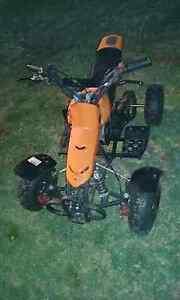 Kids 49cc quad Childers Bundaberg Surrounds Preview
