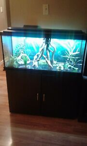 Sold 48 gallon fish tank sold