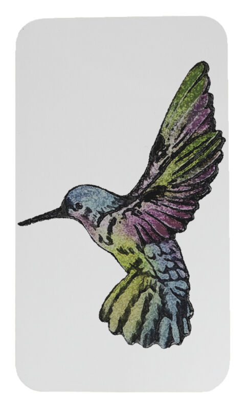 Rainbow Hummingbird Screen Door Magnet Screen Saver Magnet Set Made In USA