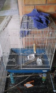 Bird cages all sizes  Hampstead Gardens Port Adelaide Area Preview