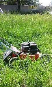 $35 Budget lawn mowing North Adelaide Adelaide City Preview