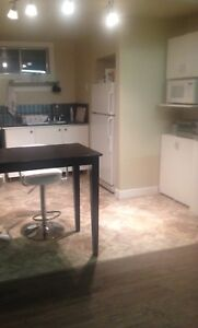 Fully furnished suite for rent