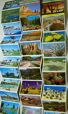 Vtg 30 Photo Souvenir USA  Lot Arizona Sun City Oak Creek Canyon Living Desert