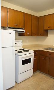 Bachelor Apartments at  Northwood Oaks