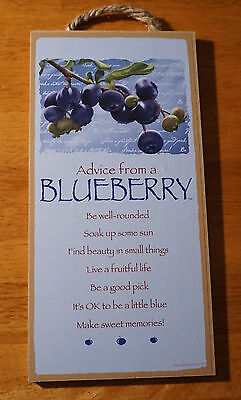 ADVICE FROM A BLUEBERRY Country Farmer Market Farm Kitchen Home Decor Sign - NEW