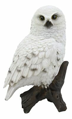 "Realistic Snowy Tundra White Owl Bird Perching On Tree Branch Statue 6.5""Tall"