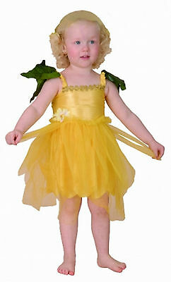 FLOWER FAIRY BABY GIRL TODDLER FANCY DRESS BOOK DAY PARTY - Baby Flower Fairy Kostüm