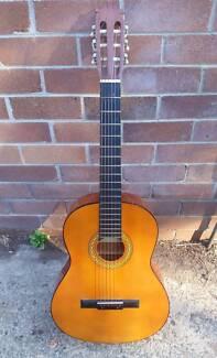 Guitar - Valencia - TC40