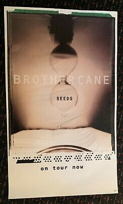 BROTHER CANE Seeds 18x30 promo poster Thin Lizzy Alice Cooper Halloween 1995](Halloween Promo Poster)